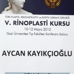 Türk Plastik, Rekonstrüktif ve Estetik Cerrahi Derneği